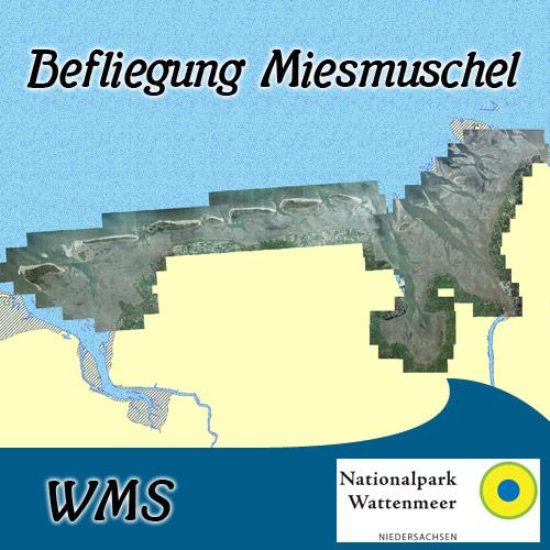 https://mdi.niedersachsen.de/preview_browser_metadata/Bef_Mies_WMS.jpg